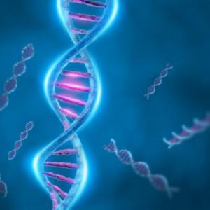 Fascinerend DNA - kraak de code